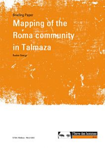 A comprehensive mapping of the Roma community in Talmaza, the Republic of Moldova. A study commissioned by Tdh in Moldova and carried out by Ruslan Stanga, 2013.